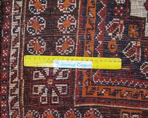 ۳۸۴۶۱-Shiraz-282×218-UK
