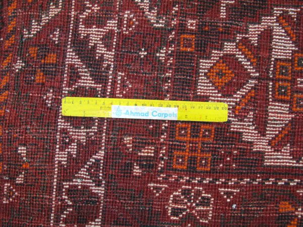 ۳۸۴۹۴-Shiraz-325×225-UK