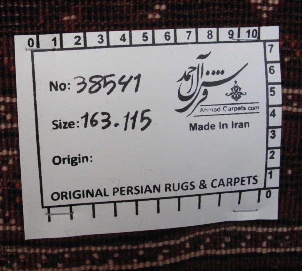 ۳۸۵۴۱-Shiraz-163×115-PP