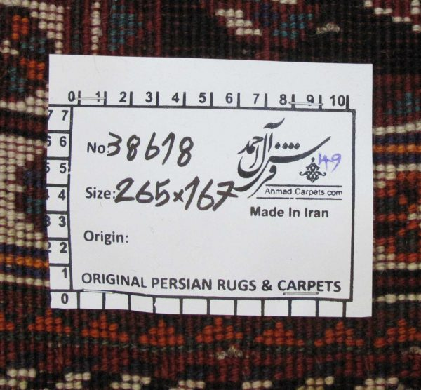 ۳۸۶۱۸-Shiraz-262×160-P